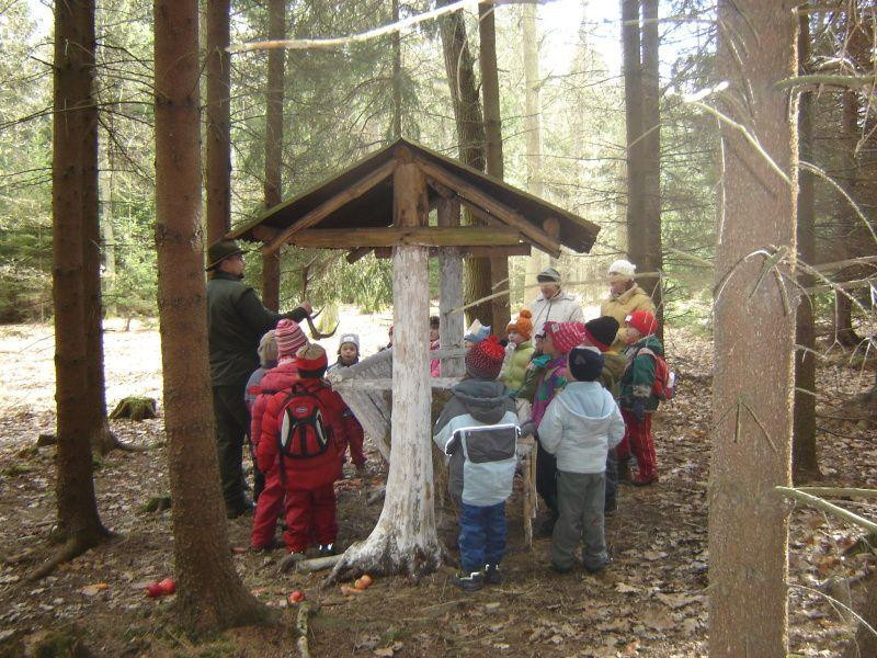 Výsledek obrázku pro hradecké lesy pro školy